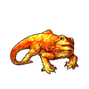 1140-sun-bearded-dragon