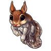 1784-brown-squirrel