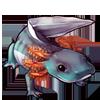 607-ocean-axolotl