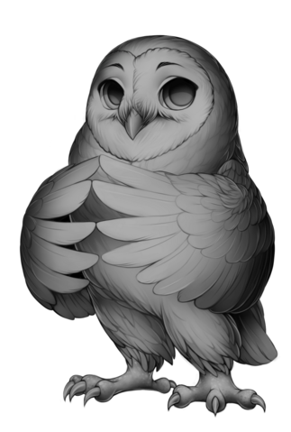 File:Barn owl base.png