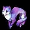 458-aurora-ferret