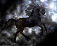 Donna marie waltz (c) black unicorn 2
