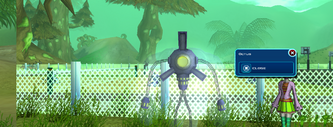 Octus