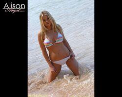 Alison Angel 010-1-