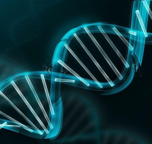 File:Biology2.jpg
