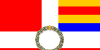 Swiss Guard (Project Paladin)