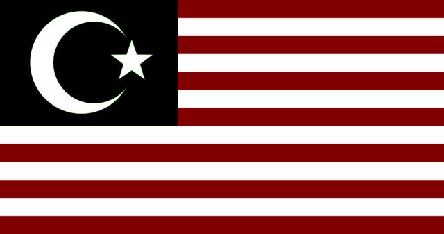 File:IslamicAmericaFlag.png