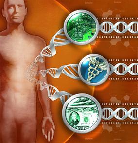 File:Human-genome.jpg