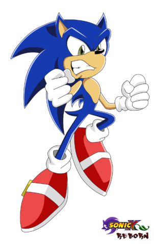 File:Sonic Sonic X Reborn.png