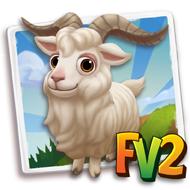 Zhongwei Goat