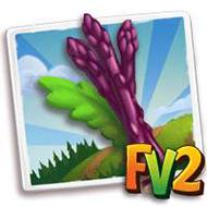 Purple Asparagus Crop