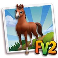 Buddony Horse