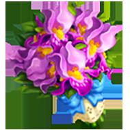 Bearded Iris Bouquet