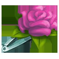 Pink Rose Hair Pin