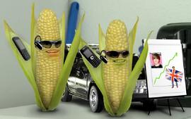 Corn spies
