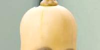Squash (Annoying Orange)
