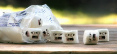 Screaming marshmallows