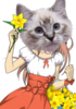 AprilFools2k11 npc 0 rina 24bit cat