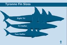 Tyranno sizes