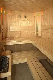250px-Sauna 2