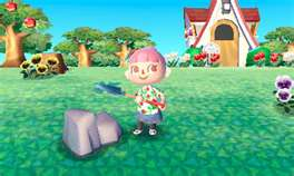 Animal 3DS