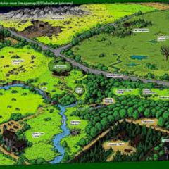 A map of the game