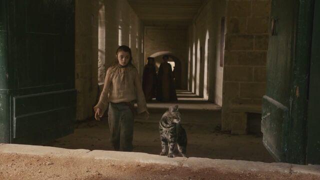 File:Arya chasing cat Episode 105.jpg