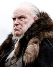 Rodrik profile