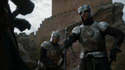 Targ Kingsguard