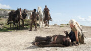 Drogo's fall.jpg