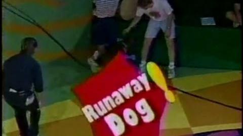 That's My Dog Sadi vs. Abe