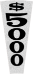 $5000 a