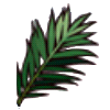 File:Palm tree leaf.png