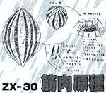 ZX 30