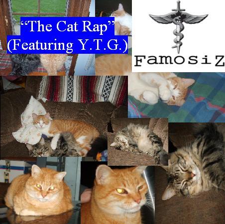File:The Cat Rap.jpg