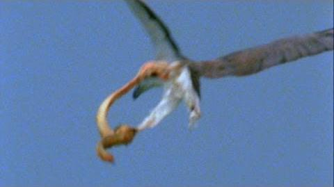 Thumbnail for version as of 00:32, June 18, 2014