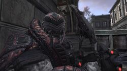 Gow-2-theron
