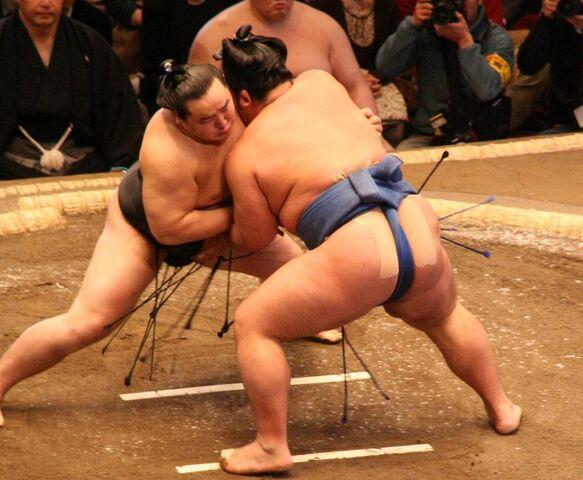 File:1024px-Asashoryu fight Jan08.jpg