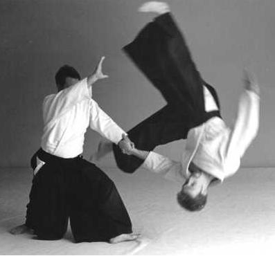 File:Aikido japanesemartialarts.png