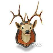 Buddy Buck