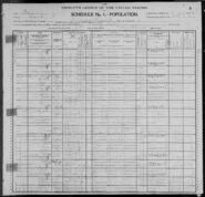 Census of Chicago Ward 27 Jefferson Township Cook County Illinois 1900 pg07