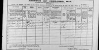 1911 census Conboy Hogan Ireland