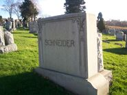 Schneider-Eddie 100 0919