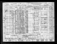 1940 census Winblad Freudenberg