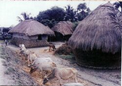Birbhum Village