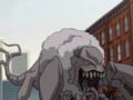 Poodle EVO.png