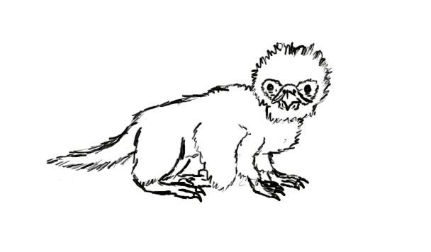 File:Ornithodromeus.jpg
