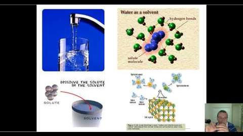 Water Wonders in Life