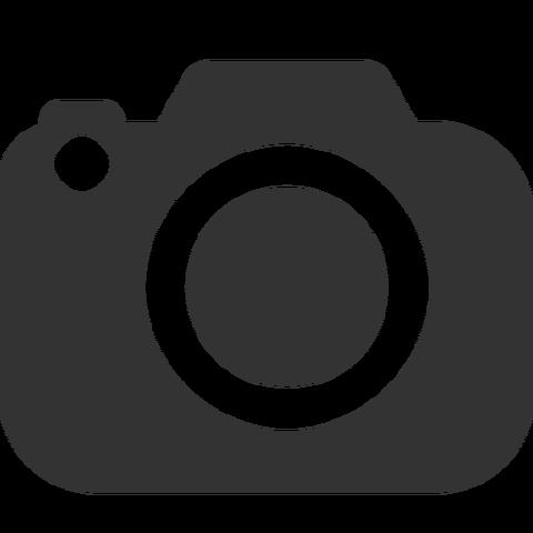 File:Camera icon.png
