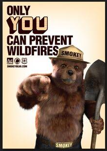 Smokey the bear - google search